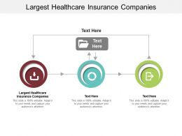 Largest Healthcare Insurance Companies Ppt Powerpoint Presentation Professional Guide Cpb