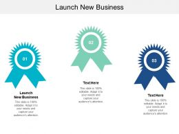 Launch New Business Ppt Powerpoint Presentation Gallery Icon Cpb
