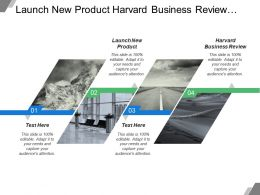Launch New Product Harvard Business Review Supplier Alliance