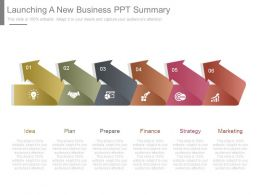 Launching A New Business Ppt Summary
