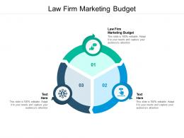 Law Firm Marketing Budget Ppt Powerpoint Presentation Summary Graphics Cpb