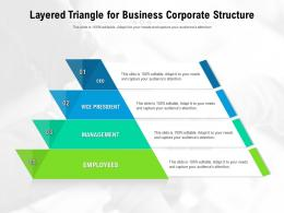 Layered Triangle For Business Corporate Structure