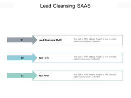 Lead Cleansing SAAS Ppt Powerpoint Presentation Rules Cpb