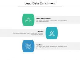 Lead Data Enrichment Ppt Powerpoint Presentation Ideas Picture Cpb