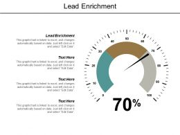 Lead Enrichment Ppt Powerpoint Presentation Outline Structure Cpb