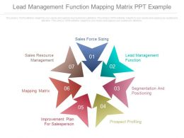 Lead Management Function Mapping Matrix Ppt Example