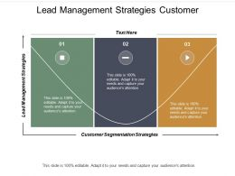Lead Management Strategies Customer Segmentation Strategies Collaborative Strategy Cpb