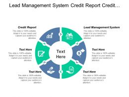 Lead Management System Credit Report Credit Customer Service Cpb