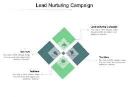 Lead Nurturing Campaign Ppt Powerpoint Presentation Gallery Pictures Cpb