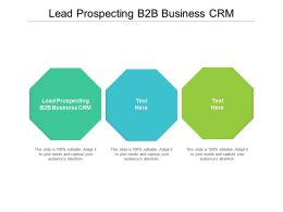 Lead Prospecting B2B Business CRM Ppt Powerpoint Presentation Slides Ideas Cpb