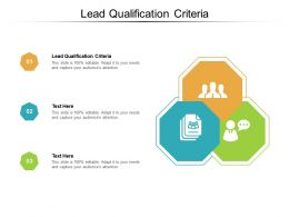 Lead Qualification Criteria Ppt Powerpoint Presentation Styles Professional Cpb