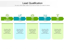 Lead Qualification Ppt Powerpoint Presentation Professional Graphics Template Cpb