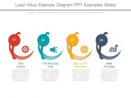 Lead Value Example Diagram Ppt Examples Slides
