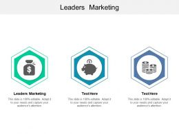 Leaders Marketing Ppt Powerpoint Presentation Styles Microsoft Cpb
