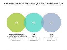 Leadership 360 Feedback Strengths Weaknesses Example Ppt Powerpoint Presentation Gallery Outline Cpb