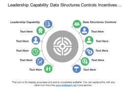 Leadership Capability Data Structures Controls Incentives Rewards Target Setting