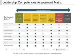 Leadership Competencies Assessment Matrix