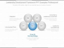Leadership Development Framework Ppt Examples Professional