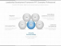 leadership_development_framework_ppt_examples_professional_Slide01