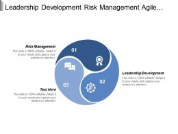 Leadership Development Risk Management Agile Project Management Software Development Cpb