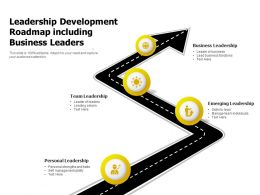 Leadership Development Roadmap Including Business Leaders