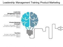 Leadership Management Training Product Marketing Strategies Merger Acquisition Cpb