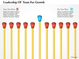 Leadership Of Team For Growth Powerpoint Templates