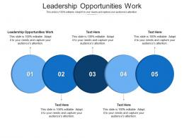 Leadership Opportunities Work Ppt Powerpoint Presentation Styles Visuals Cpb