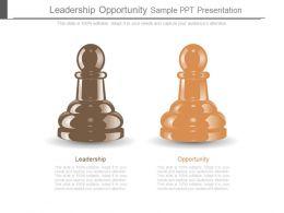 Leadership Opportunity Sample Ppt Presentation