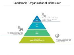 Leadership Organizational Behaviour Ppt Powerpoint Presentation Show Design Templates Cpb