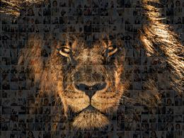 Leadership Slide Photo Mosaic Lion Collage Ppt Ideas