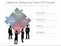 Leadership Strategy And Tactics Ppt Example