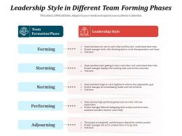Leadership Style In Different Team Forming Phases