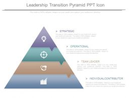 Leadership Transition Pyramid Ppt Icon