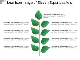 Leaf Icon Image Of Eleven Equal Leaflets