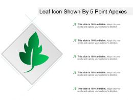 Leaf Icon Shown By 5 Point Apexes