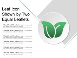 Leaf Icon Shown By Two Equal Leaflets