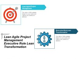 Lean Agile Project Management Executive Role Lean Transformation Cpb