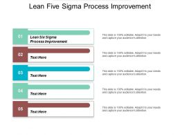 Lean Five Sigma Process Improvement Ppt Powerpoint Presentation File Graphics Example Cpb
