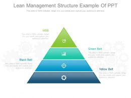 Lean Management Structure Example Of Ppt