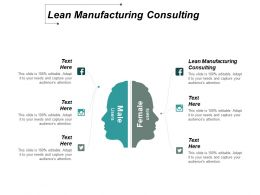 Lean Manufacturing Consulting Ppt Slides Styles Cpb