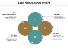 Lean Manufacturing Insight Ppt Powerpoint Presentation Professional Template Cpb