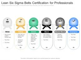 Lean Six Sigma Belts Certification For Professionals