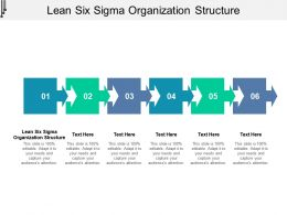 Lean Six Sigma Organization Structure Ppt Powerpoint Presentation Slides Example Cpb