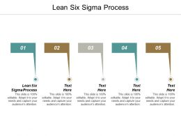 Lean Six Sigma Process Ppt Powerpoint Presentation Professional Slide Portrait Cpb