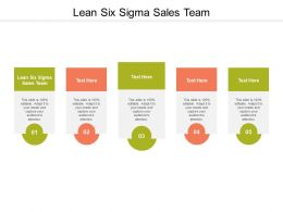 Lean Six Sigma Sales Team Ppt Powerpoint Presentation Ideas Grid Cpb