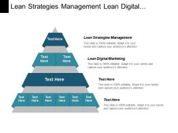 Lean Strategies Management Lean Digital Marketing Branch Channels Cpb