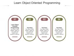 Learn Object Oriented Programming Ppt Powerpoint Presentation Infographic Template Topics Cpb