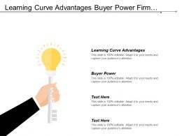 Learning Curve Advantages Buyer Power Firm Concentration Ratio