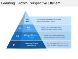 Learning Growth Perspective Efficient Effective Process Create Capability